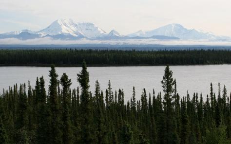 Alaska 2009 937