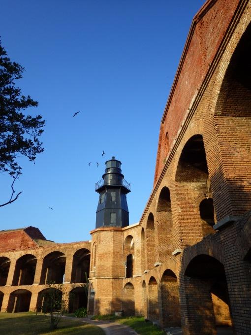 The lighthouse with Majestic Frigatebirds