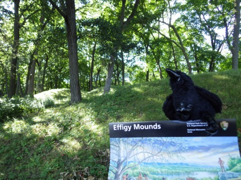 Echo with Effigy Mounds