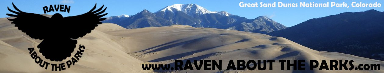 Raven About The Parks — Start your National Park adventure here!