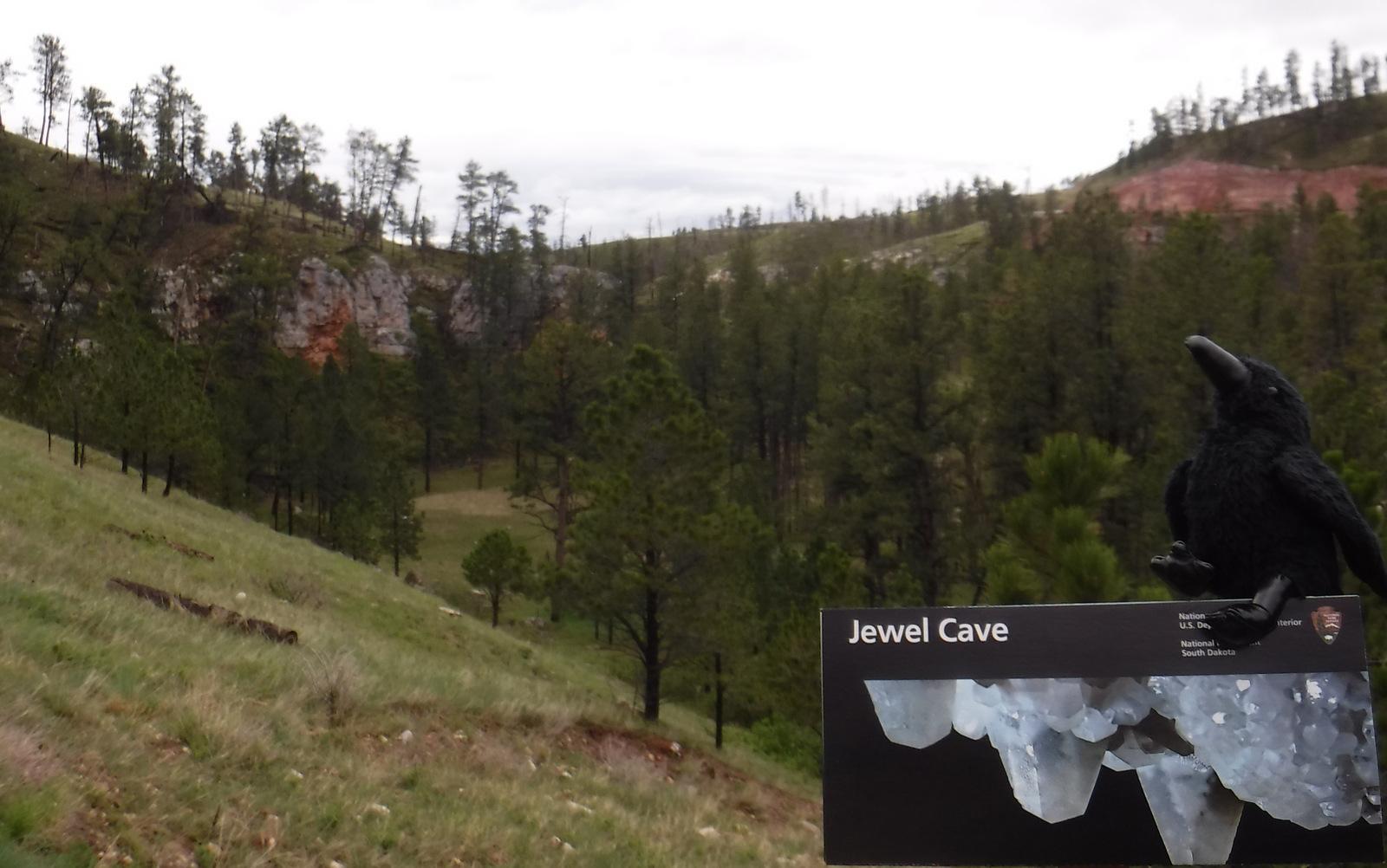 Jewel Cave.JPG