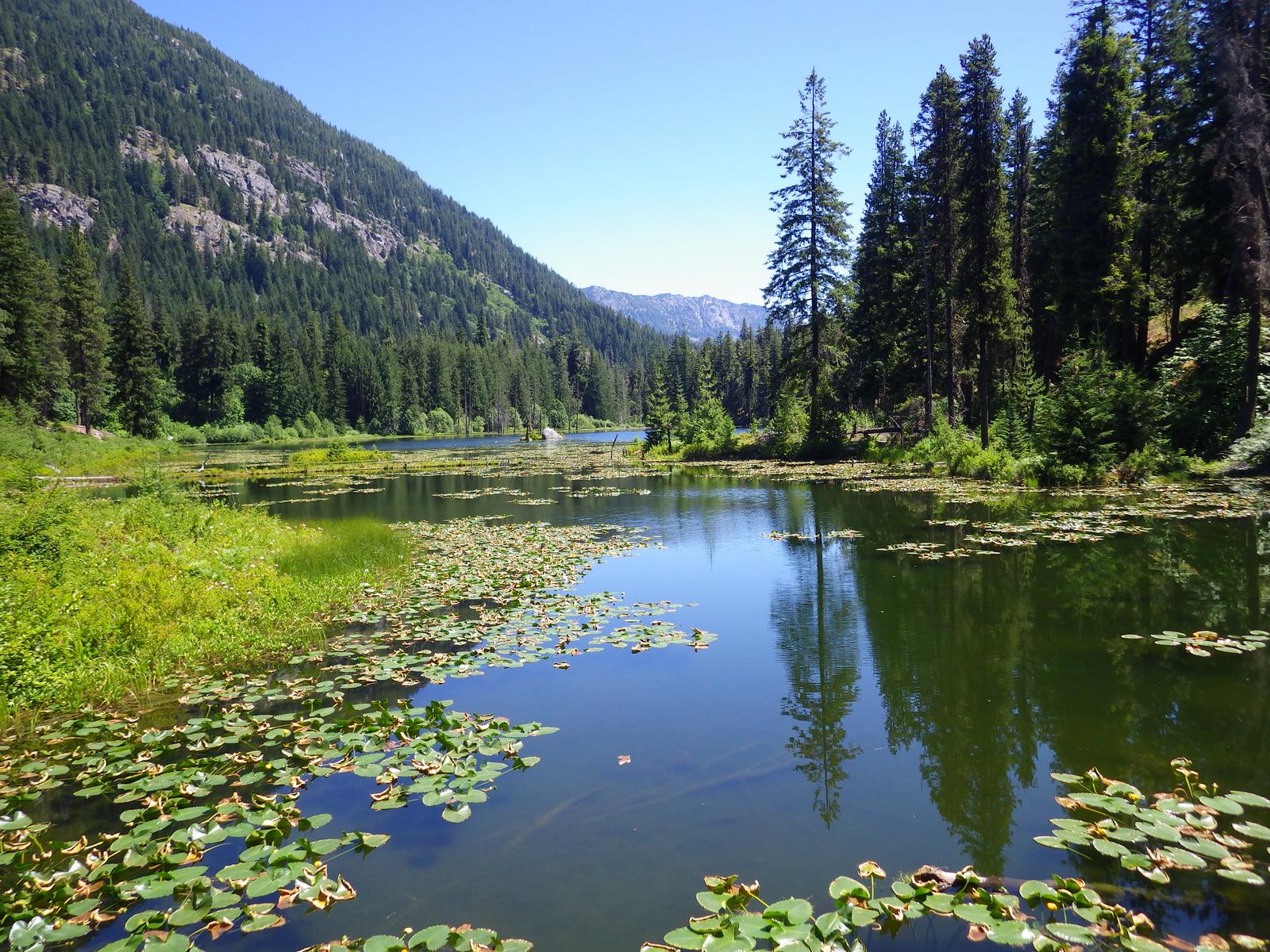 July Oregon 316