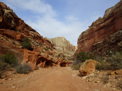 Heading into Grand Wash in Canyonlands National Park
